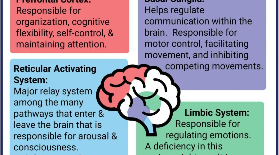 What is all about ADHD?